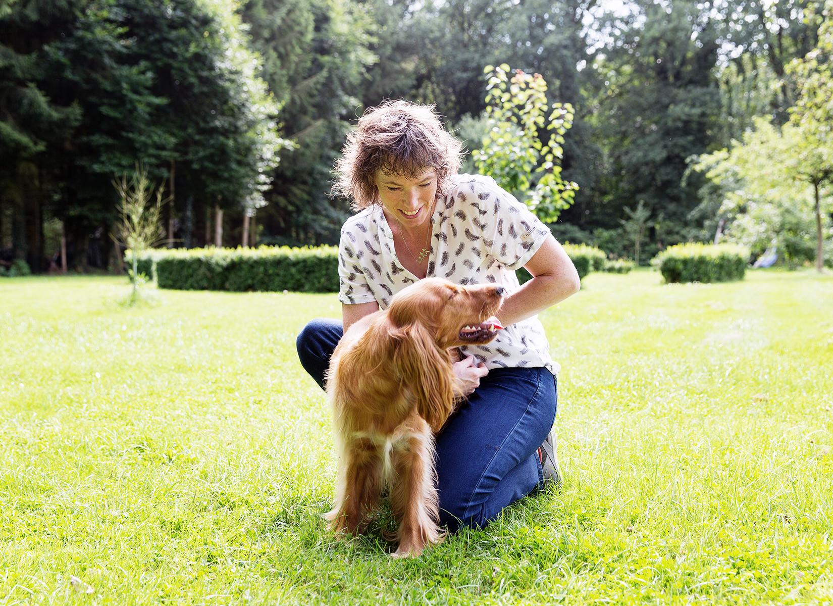 Behandeling van een hond door de chiropractor